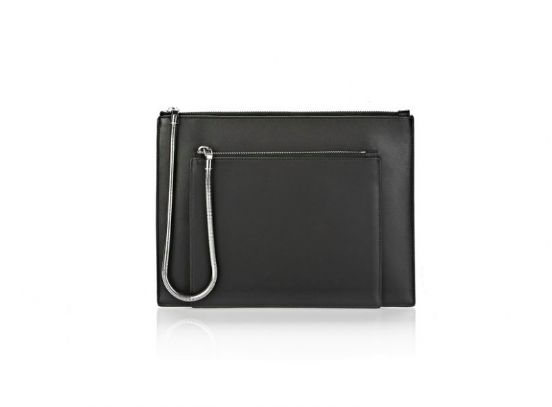 figtny.com | Alexander Wang Chastity Double Flat Pouch
